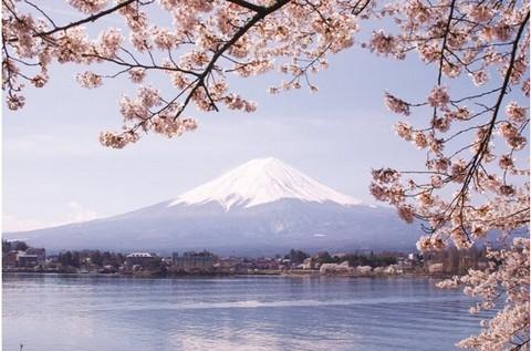 Những lễ hội độc đáo tại Nhật Bản