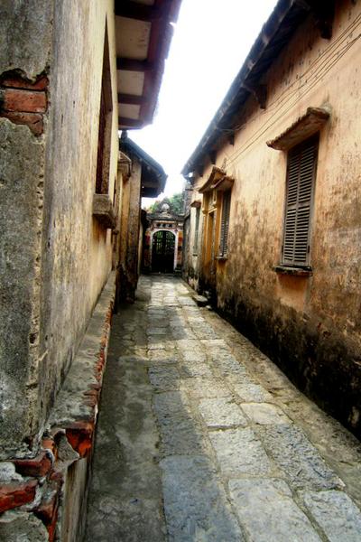 Một chiều với làng Cựu