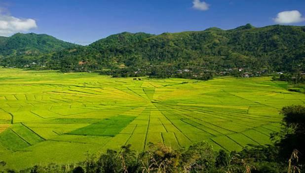 Ruteng, thanh âm trong trẻo của Indonesia
