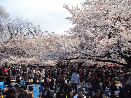 Những lễ hội hấp dẫn và độc đáo trong tháng 3