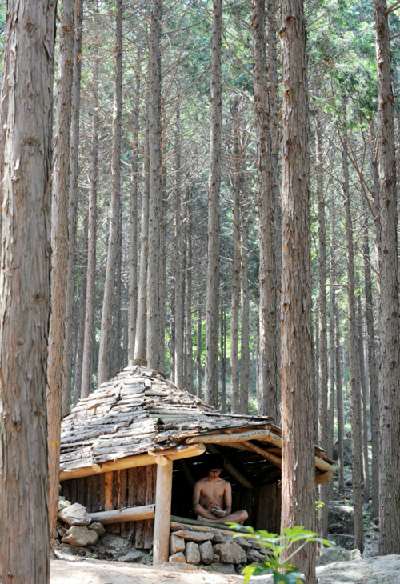 Thoải mái 'tắm tiên' trong rừng ở Hàn Quốc