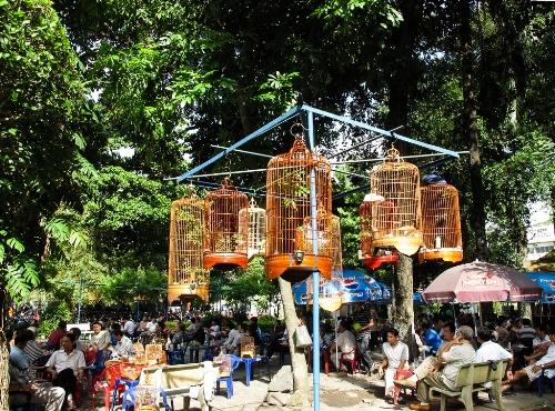 Dạo quanh những khu chợ chim đặc sắc ở Sài Gòn