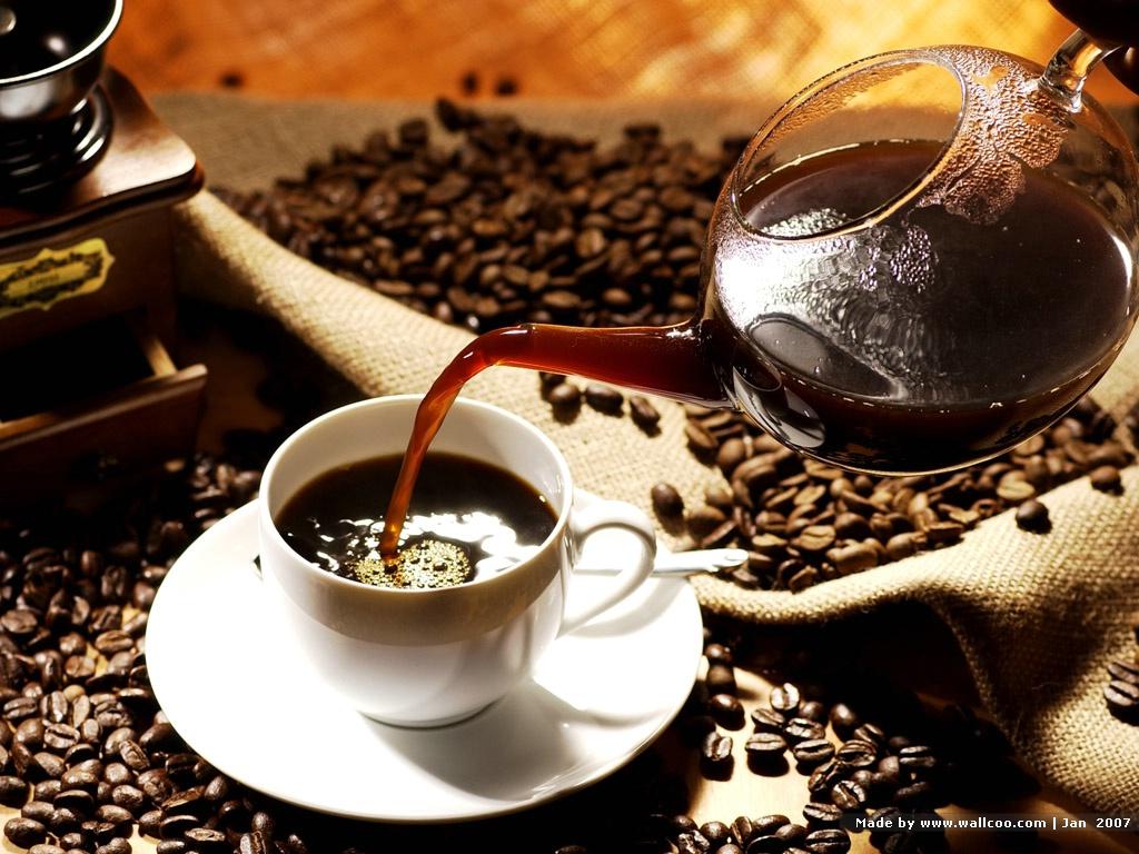Cà phê nào đắt nhất thế giới hiện nay?