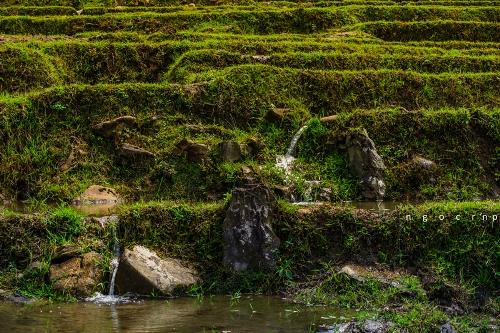 Mùa nước đổ trong lòng thung lũng Tả Van