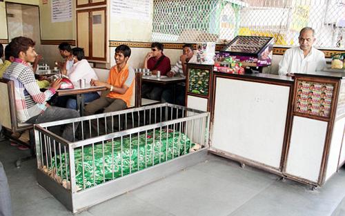 Nhà hàng nằm giữa những nấm mộ ở Ấn Độ