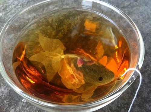 """Trà túi lọc cực """"độc"""" biến cốc trà của bạn thành … bể cá"""