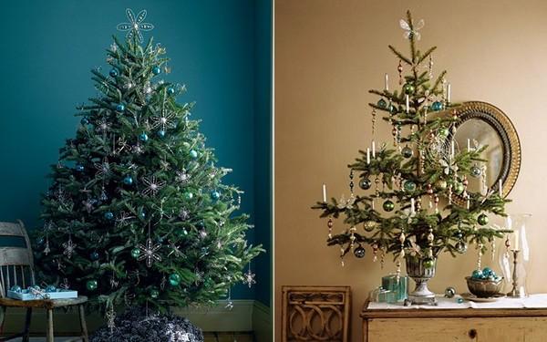 Bạn có biết gì về nguồn gốc ra đời của cây thông Noel?
