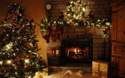 Bí mật về nguồn gốc của cây thông Noel