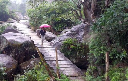 Những con đường lát gỗ ở Lào Cai