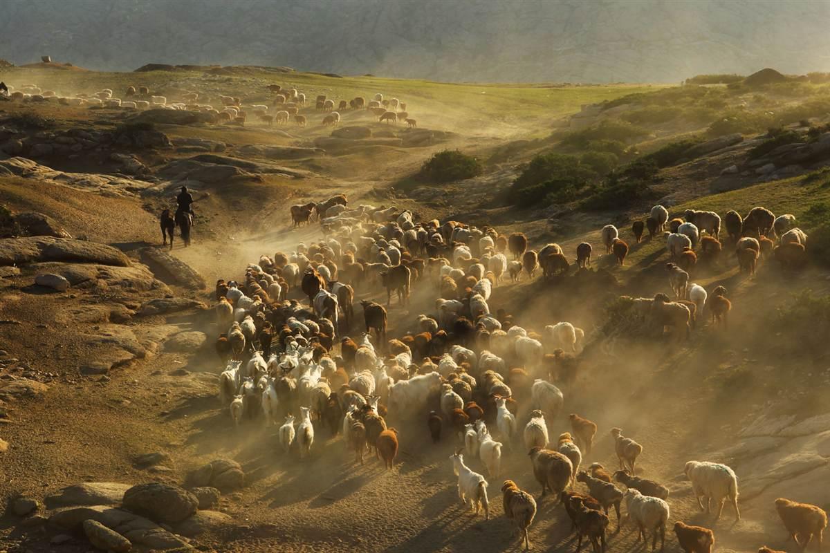 Chinh phục vùng đất Nội Mông