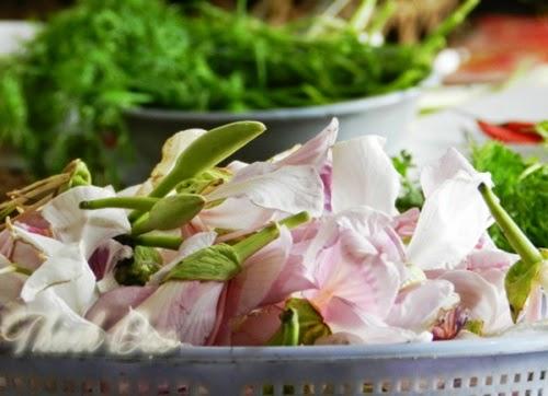 Nộm hoa ban của người Thái ở Lai Châu
