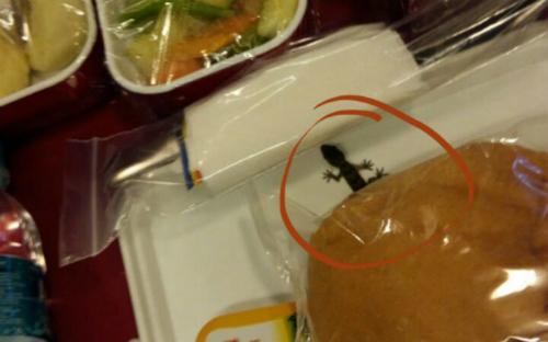 Hàng không Ấn Độ bác tin có thằn lằn trong suất ăn