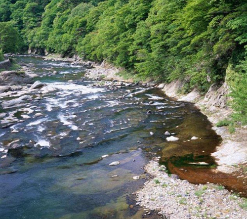 Suối nước nóng ở Nhật đóng cửa vì xuất hiện cảnh 'mát mẻ'