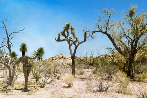 Bộ ảnh người mẫu khỏa thân ngụy trang giữa thiên nhiên