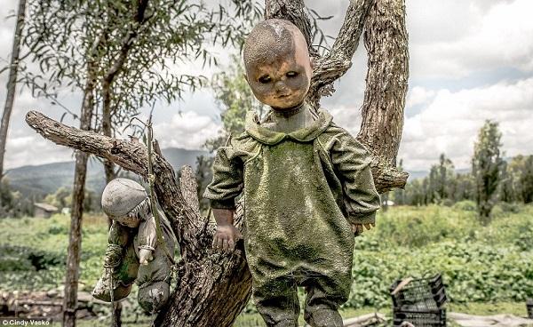 Bí ẩn đau thương trên đảo búp bê ma quái ở Mexico