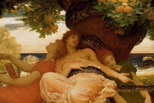 Lixus, nơi những cây táo ra trái bằng vàng ở Morocco