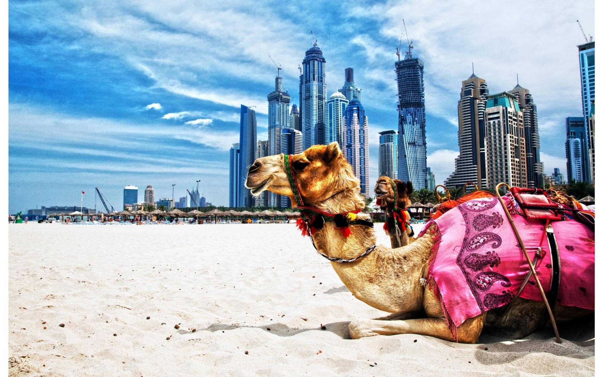 Những điều khiến du khách lạ lẫm khi đến Dubai