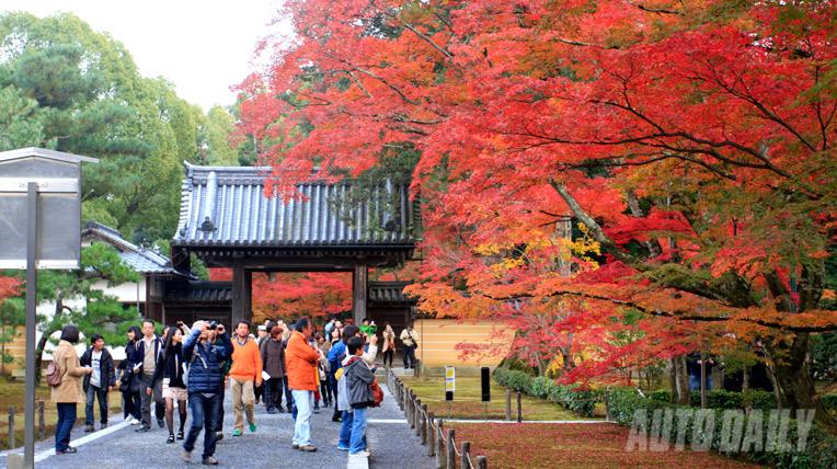 Hành trình 5 ngày thưởng ngoạn mùa Thu Nhật Bản