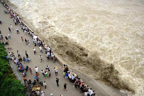 'Quái vật' sông Tiền Đường hấp dẫn du khách