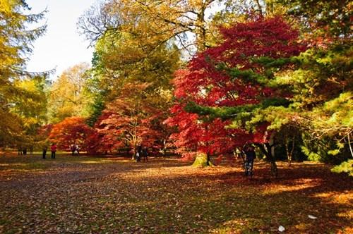 5 điểm đến lý tưởng mùa thu
