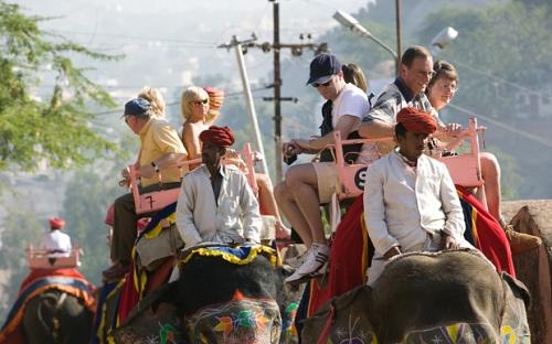 Ấn Độ cân nhắc cấm dịch vụ cưỡi voi
