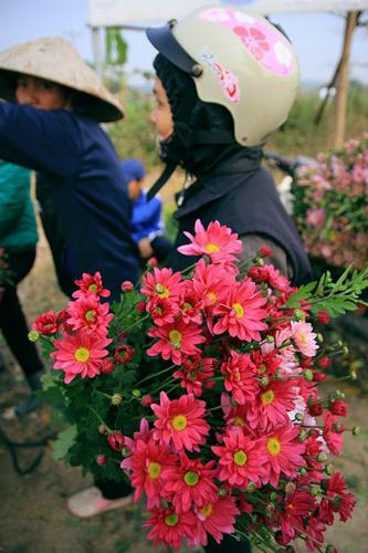 6 chợ hoa Tết nổi tiếng của Hà Nội