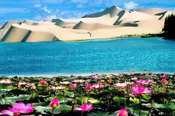 Bàu Trắng Bình Thuận - Thiên nhiên hoang sơ đẹp thuần khiết