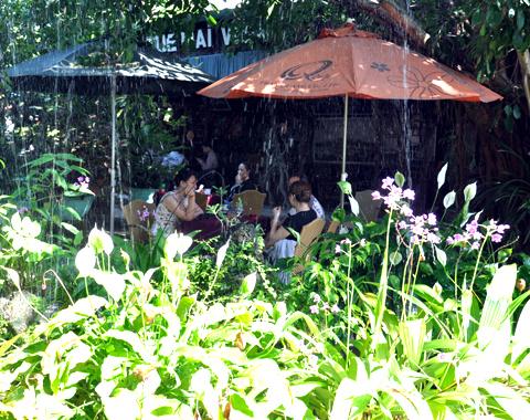 Đến 'Lá phổi xanh' giữa thành phố Quảng Ngải trốn nắng