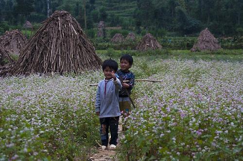 Hà Giang sẽ có 21 điểm phát sóng wifi miễn phí