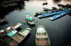Du lịch Việt Nam tăng trưởng trở lại trong tháng 7