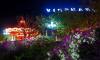 Những cung đường hoa giấy lãng mạn tại Nha Trang