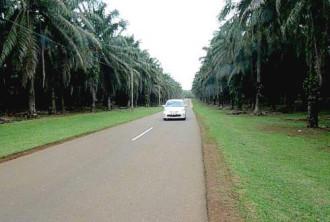 Tự lái xe khám phá Malaysia