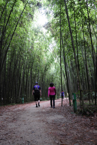 5 điểm nên ghé thăm ở thành phố Ulsan
