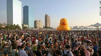 Người Đài Loan 'đội' bão đi xem vịt khổng lồ