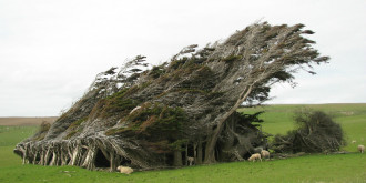 Vùng đất 'máy sấy tóc' ở miền nam New Zealand