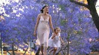 Lễ hội hoa phượng tím lâu đời nhất Australia