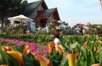 Đà Lạt khai mạc hội hoa 2013
