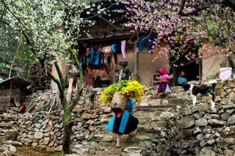 Hội chợ Du lịch Quốc tế Việt Nam 2014 đột phá về quy mô