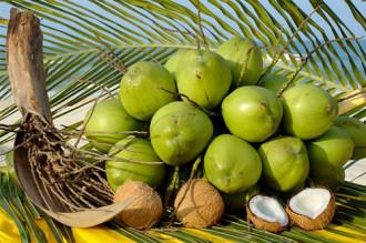 Món ngon từ dừa trong ẩm thực Bến Tre