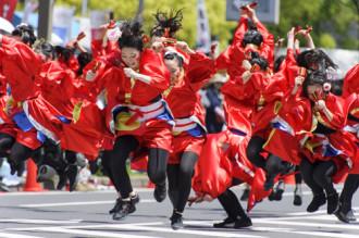 Mùa hè sôi động cùng vũ điệu Yosakoi