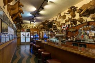 Nhà hàng trang trí bằng hơn 300 đầu động vật