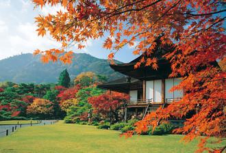 Có một mùa thu khác ở Nhật Bản...