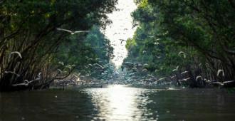 5 lý do Việt Nam được du khách yêu mến
