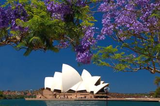 Lễ hội hoa Floriade – cuộc hẹn mùa Xuân nước Úc