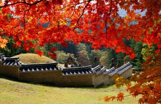 'Mùa săn lá đỏ' Bắc Á