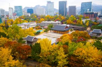 Du lịch đến Hàn Quốc mùa lá đỏ