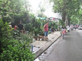 Những con phố 'hàng' mới ở Hà Nội
