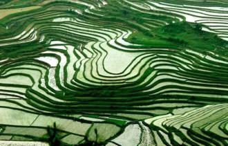 Việt Nam, top điểm đến lý tưởng dành cho khách độc hành
