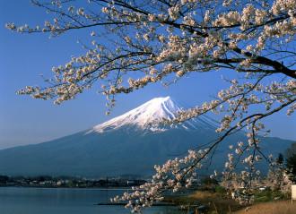 8 quy tắc ứng xử bạn nên biết khi du lịch Nhật Bản