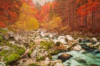 Chùm ảnh mùa Thu tuyệt đẹp trên khắp thế giới